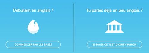 Choix niveau Duolingo