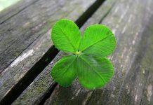 Découvrez les secrets des gens qui ont de la chance