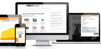 Test et avis Mosalingua