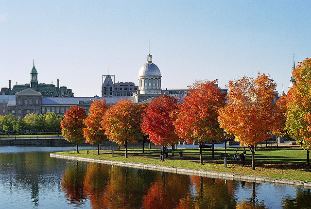Temoignage vivre a Montreal Quebec